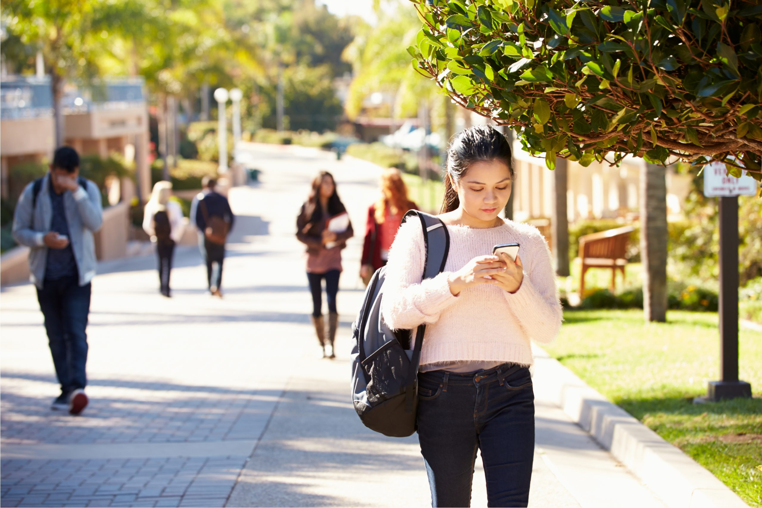 Search Marketing Strategies for Student Housing